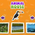 Animal  House game