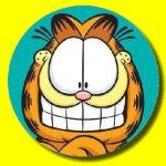 Garfield Hidden Stars