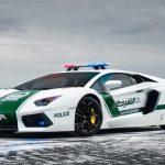 Police Cars Jigsaw Puzzle